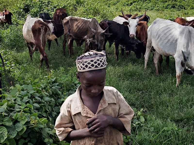 Центрально африканская республика (16)