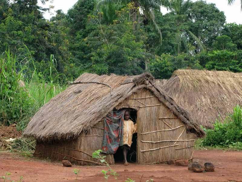 Центрально африканская республика (5)