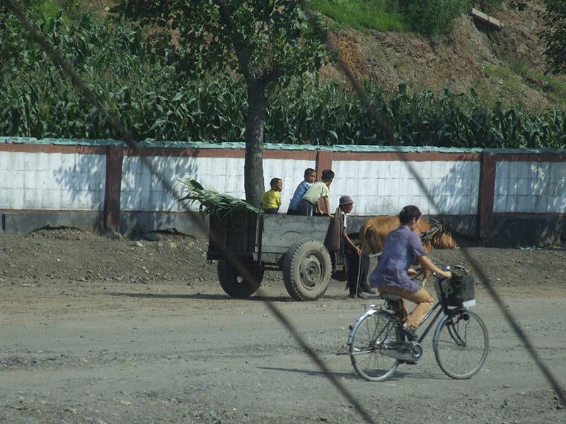 Жизнь в Северной Корее (11)