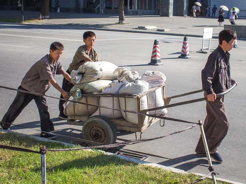 Жизнь в Северной Корее (28)